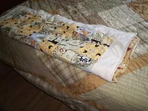 chicken quilt2 april 2008
