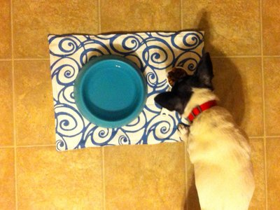 doggie dinner station after